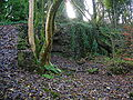 Orry or Eaglesham Cotton Mill ruins.JPG