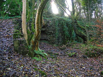 Eaglesham - Ruins of the Orry cotton mill
