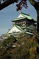 OsakaM0774.jpg