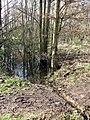 Outflow across footpath - geograph.org.uk - 1190882.jpg