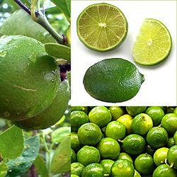 Owoce Lima.jpg