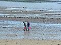 Pêcheurs à pied.jpg