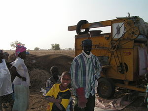 Agriculture in Senegal - Threshing millet in Malem-Hodar.