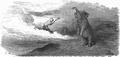PL Jean de La Fontaine Bajki 1876 798.png