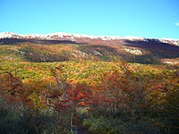 PN Tierra del Fuego (Automne).jpg
