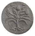 POL Bona Sforza Medal Awers.png