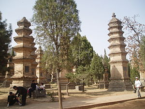 Pagoda Forest at Shaolin Temple - The Pagoda forest