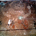 Paintings at srikurmam Temple walls 01.jpg