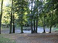 Park - Brwinów 16.jpg