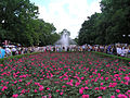 Park of the victory.jpg