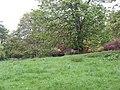Parkland, Keillour Castle - geograph.org.uk - 433855.jpg