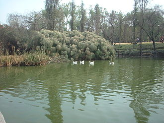 Azcapotzalco - Scene from Parque Tezozomoc