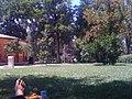 Parque del Retiro (4776979101).jpg