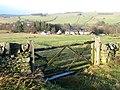 Pastures near Shilburn - geograph.org.uk - 628122.jpg