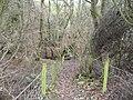 Path down to footbridge at Park Head Beck - geograph.org.uk - 662371.jpg