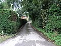 Path to Rossington - geograph.org.uk - 217523.jpg