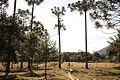 Patrimonio do matuto - serra do papagaio-4.jpg