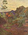 4 / Tropische Pflanzenwelt