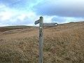 Pennine Bridleway signpost on Clegg Moor - geograph.org.uk - 103919.jpg