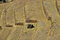 Peru - Sacred Valley & Incan Ruins 189 - Pisac (8114549241).jpg