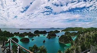 Piaynemo Island, Raja Ampat, West Papua, Indonesia.jpg