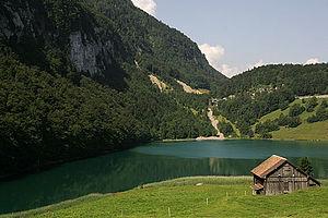 "Seelisberg - Seeli (literally ""small lake"") or Selisbergsee, the lake after which ""Seelisberg"" is named"
