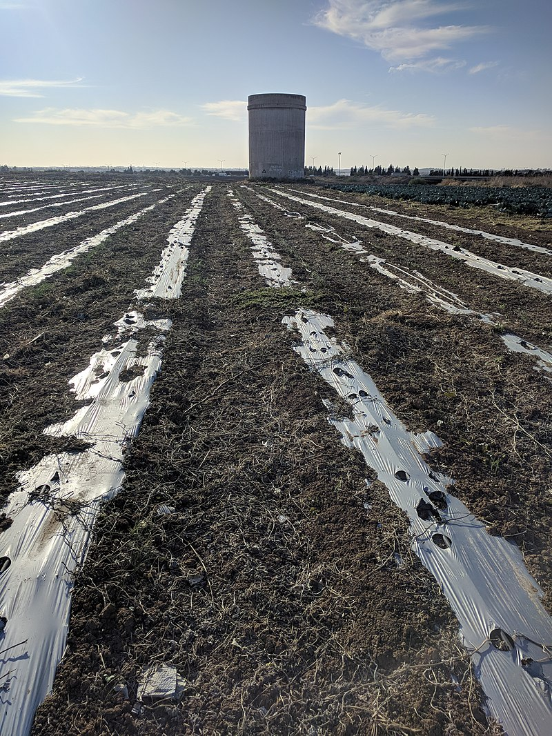 מגדל המים במושב פדיה