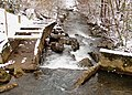 Pistol-creek-mill-ruins-tn1.jpg