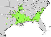 Planera aquatica range map.jpg