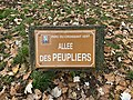 Plaque allée Peupliers Parc Croissant Vert Neuilly Marne 1.jpg