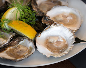 "Yerseke - The European flat oyster is known locally as ""Zeeuwse platte"""