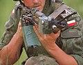 Polish AKMS (cropped).JPEG