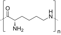 Skeletal formula of polylysine