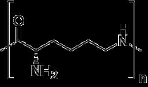 Polylysine - Image: Polylysine