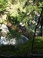 Ponte Dora di Valgrisenche 1.JPG