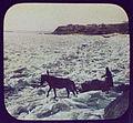 Pony-drawn sledge on rough ice of Amur River at Khabarovsk LCCN2004708037.jpg