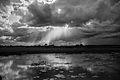 Por do sol no Pantanal.jpg