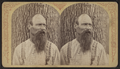 Portrait of a beared man, by Stoddard, Seneca Ray, 1844-1917 , 1844-1917.png