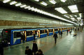 Pozniaky metro station Kiev 2011 02.jpg