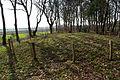 Prehistorische grafheuvels bij Toterfout - Halve Mijl 14.JPG