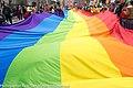 Pride Festival 2013 On The Streets Of Dublin (LGBTQ) (9183769654).jpg