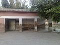 Primary school in qillah shah baig.jpg