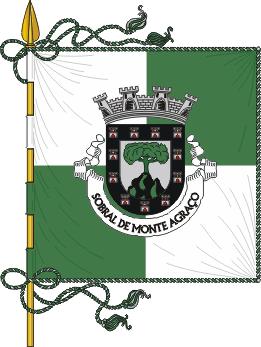 Flag of Sobral de Monte Agraço