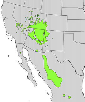 Purshia mexicana range map.jpg