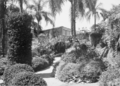 Queensland State Archives 219 Grounds of the Old Museum Building Gregory Terrace Fortitude Valley April 1937.png