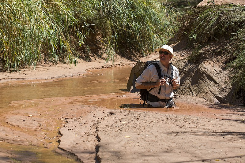 File:Quicksand in Courthouse Wash (9737357112).jpg