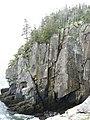 Quoddy Head Cliffs - panoramio (1).jpg
