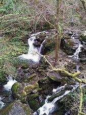 Río Sesín afluente do Eume.jpg