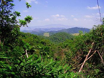 Tinguá Biological Reserve