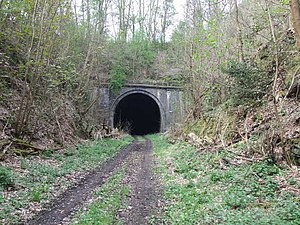English: Railway Tunnel Old railway between Ba...